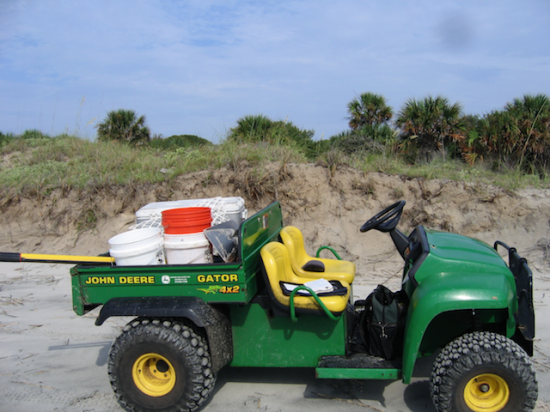 Beaches are monitored using low impact vehicles called ATV's. On St. Catherines Island we prefer to use the John Deere Gator TS.