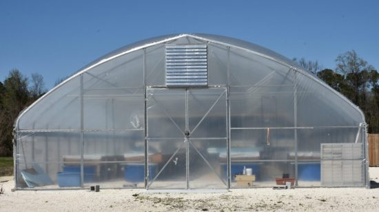 Large transparent greenhouse