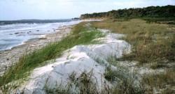 Shoreline of North Beach, St. Catherines Island